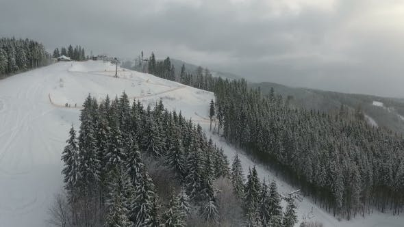 Thumbnail for Skiers and Snowboarders Go Down the Slope in a Ski Resort. Winter Forest. Aerial View