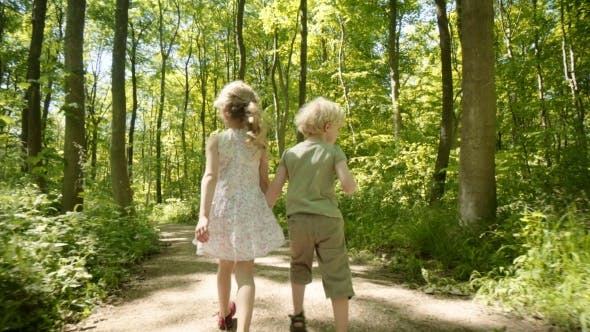 Cover Image for Brother and Sister in Woods