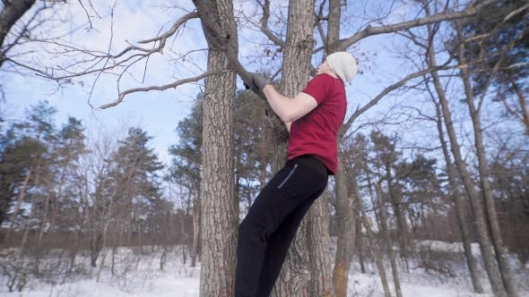 Thumbnail for Strong Sporty Young Man Is Pulling Up on a Branch of Naked Tree in a Winter Park in Daytime, Lifting