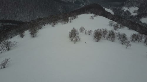 Aerial View of a Snowboarder Descending By a Mountain Ridge Among Trees. Birds Eye View Above White