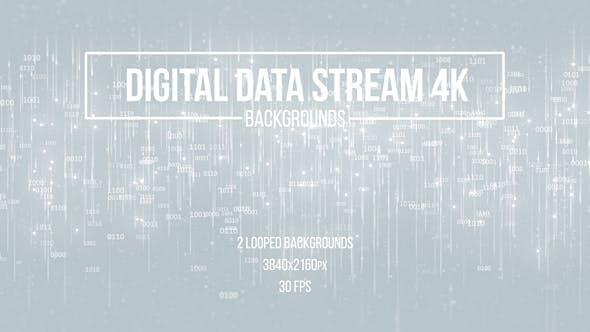 Thumbnail for Digital Data Stream White Backgrounds