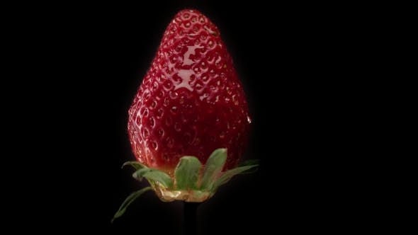 Thumbnail for Fresh Strawberry on Black Background and a Transparent Drop Pouring on It