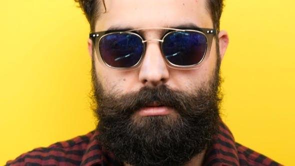 Thumbnail for Natural Smiling Long Bearded Hipster with His Sunglasses on