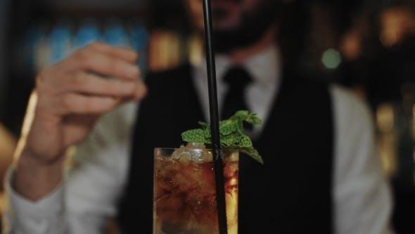 Thumbnail for Professional Bartender Prepares Mojito Cocktail