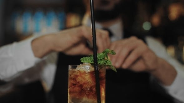 Thumbnail for Professional Bartender Prepares Mojito Cocktail