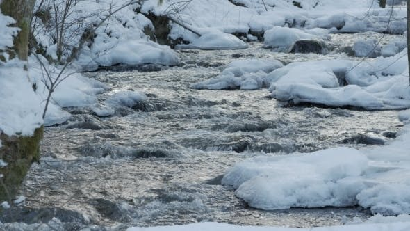 Cover Image for A Beautiful Crystal Clear Stream in Winter with Snow Flows Through Woods