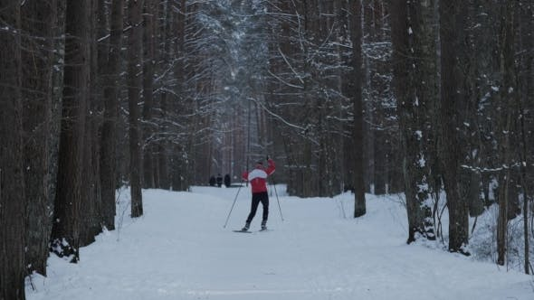 Cover Image for Man Skiing Alone in Nature