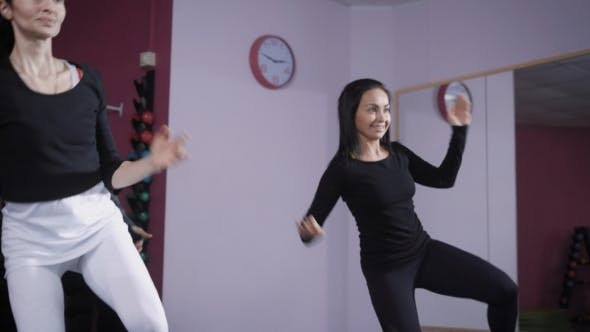 Thumbnail for Female Group Is Doing Aerobics in a Training Room with Large Mirror for Keeping Fit and Losing