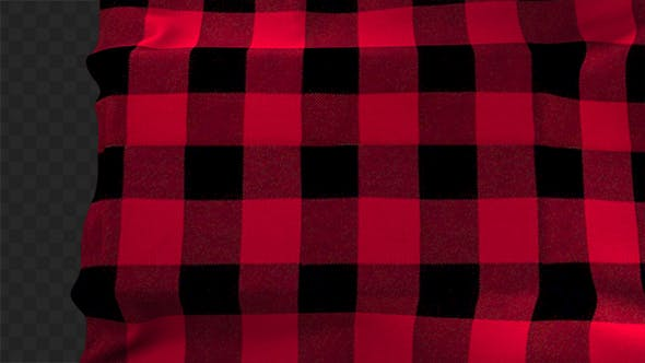 Thumbnail for Red Plaid Cloth Reveal 01