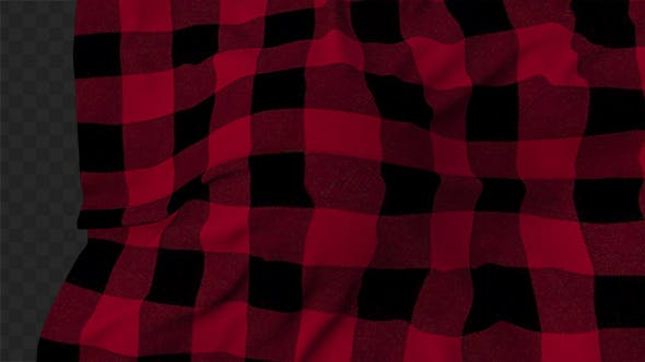 Thumbnail for Red Plaid Cloth Reveal 02