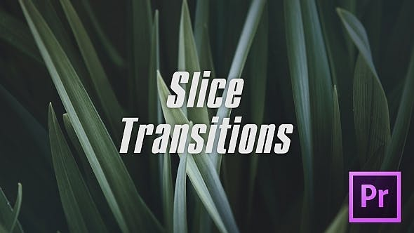 Cover Image for Slice Transitions