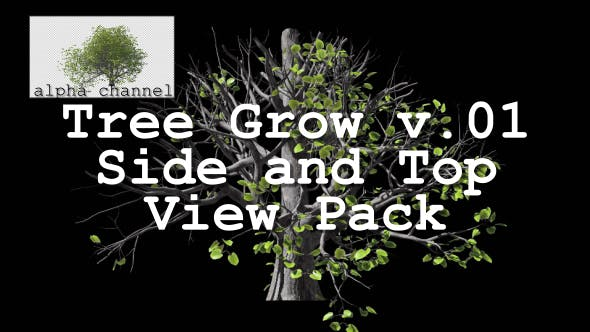 Thumbnail for Tree Grow v. 01 Side and Top View Pack