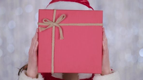 Thumbnail for Santa Woman Costume Holds a Gift in Her Hand and Waves Her Hand