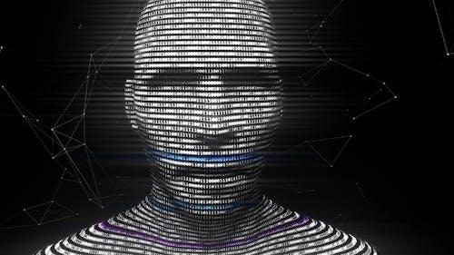 A Digital Virtual Man Generated From Binary Code