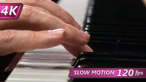 Touching the Piano Keys