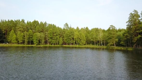 Thumbnail for Aerial View of Green Forest by a River Side