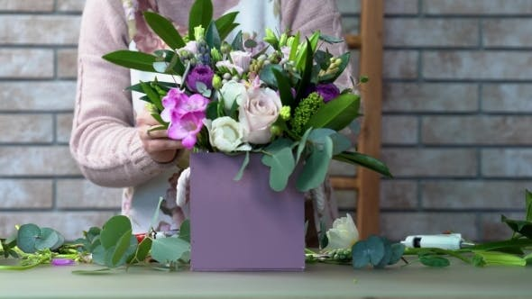 Thumbnail for Face View of a Florist in a Apron Making a Violet Shades Flowers Composition with Roses, Eustomas
