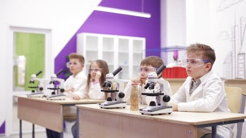 Modern Biology Lesson in Elementary School