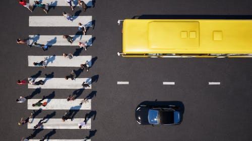 Crosswalk and Traffic