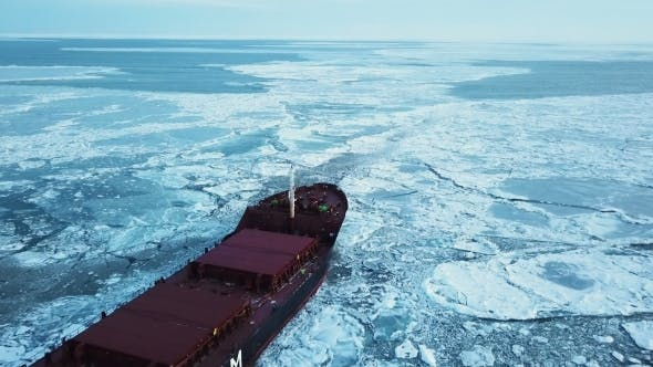 Cover Image for The Ship Sails Through the Sea Ice in the Winter