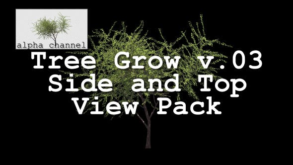 Thumbnail for Tree Grow v. 03 Side and Top View Pack
