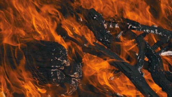 Wood Fire Burning Slow