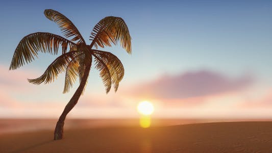 Thumbnail for Sunny Sand Background