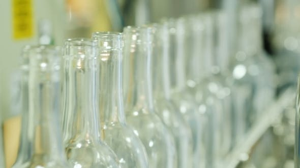 Cover Image for Empty Bottles for Alcoholic Drinks on the Conveyor. Wine Industry