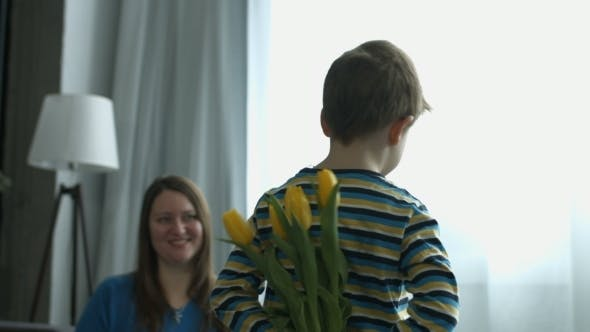 Thumbnail for Little Boy Surprises Mother with Flowers at Home