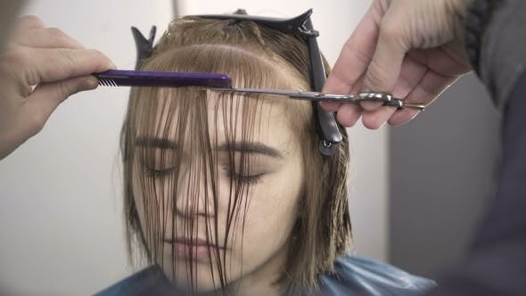 Thumbnail for Stylist Dying Hair