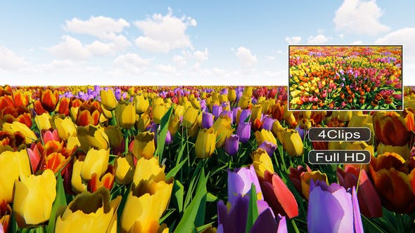 Thumbnail for Tulip Field Pack