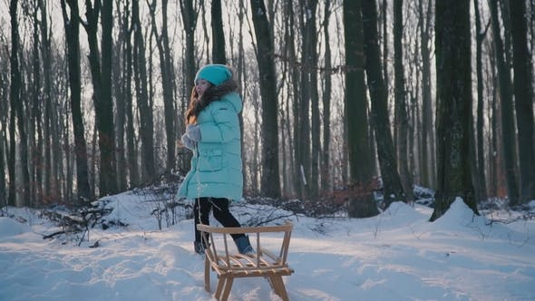 Thumbnail for Girl Is Pulling the Sleigh