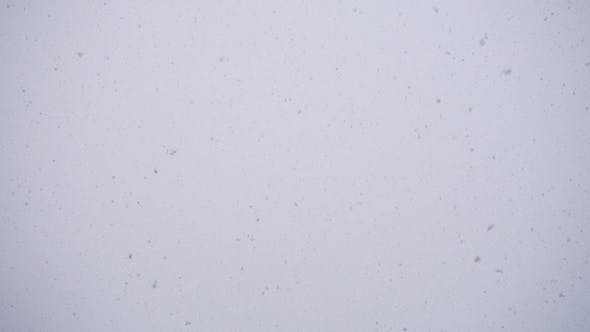 Thumbnail for Winter, Sky, Falling Snowflakes