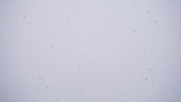 Thumbnail for Winter, Sky, Falling Snowflakes