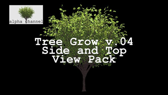 Thumbnail for Tree Grow v. 04 Side and Top View Pack