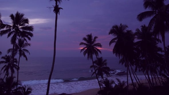 Thumbnail for Beautiful Sunset on the Tropical Ocean Shore