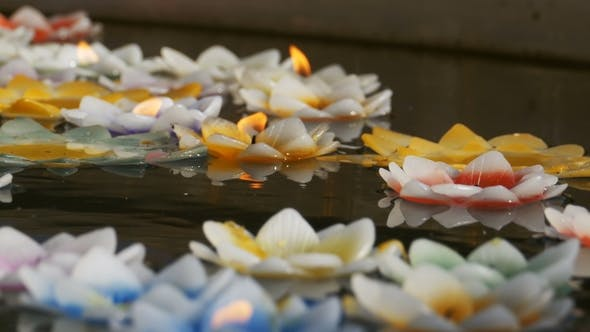 Thumbnail for Colorful Candles in Lotus Shape Floating on Water in a Buddhist Temple. Pattaya. Thailand.