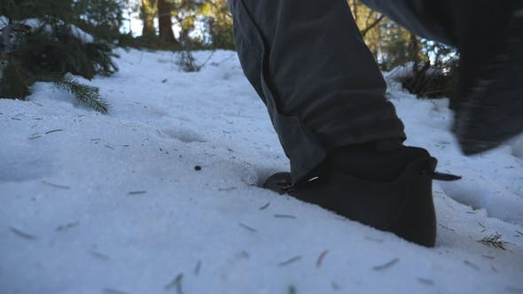 Thumbnail for Feet of Unrecognizable Man Walking on Snow Mountain Forest in Morning. Young Hiker Climbing on Snowy