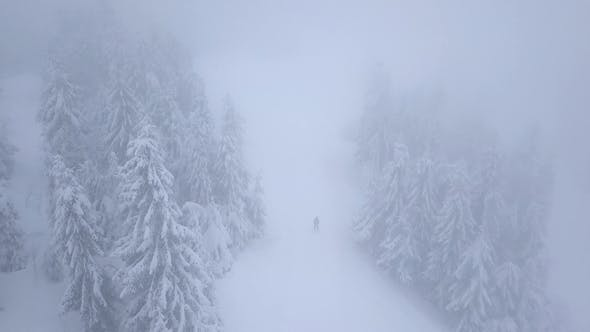 Flight Over Snowstorm in a Snowy Mountain Coniferous Forest and on the Ski Track with Unrecognizable