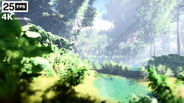 Thumbnail for Swamp Forest 01 4K