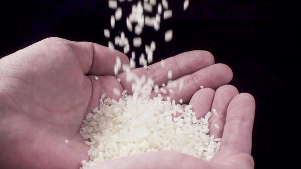 Thumbnail for Reis wird in die Hände gegossen