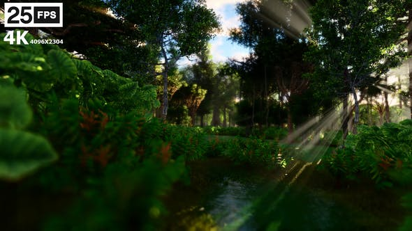 Thumbnail for Swamp Forest 02 4K