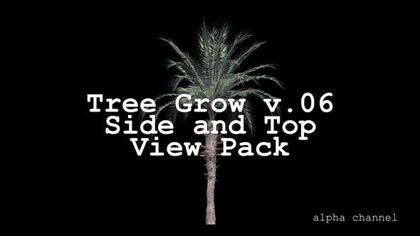 Thumbnail for Tree Grow v. 06 Side and Top View Pack