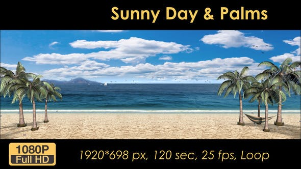 Thumbnail for Sunny Day Palm Trees On The Beach
