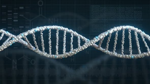 Thumbnail for Rotating DNA Molecule Against Genetics Related Background