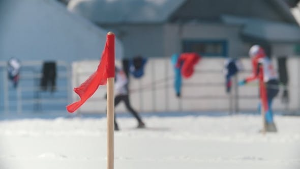 Thumbnail for The Skiers at the Ski Track on Competitions Cross-country Skiing, De-focused