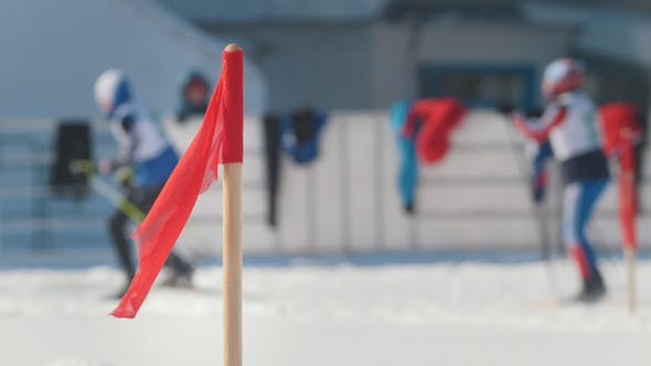 Cover Image for Competitions Cross-country Skiing, Blurred