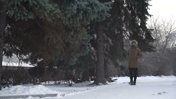 Thumbnail for Der Mensch geht durch den Wald
