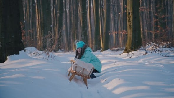 Cover Image for Girl Is Pulling the Sleigh