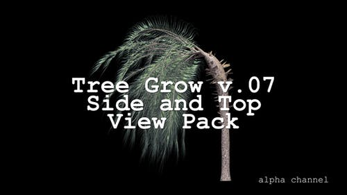 Tree Grow v. 07 Side and Top View Pack